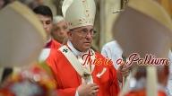 francis-pallium-text