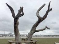 Angels in Storm Trees Post-Katrina - Mississippi